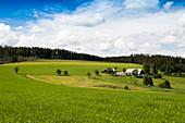 Farm, near Titisee-Neustadt, Black Forest, Baden-Württemberg, Germany