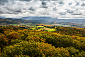 View from Eichbergturm to mixed autumn forest, near Emmendingen, Black Forest, Baden-Wuerttemberg, Germany