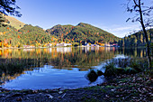 Spitzingsee on the shore in autumn, Bavaria, Germany