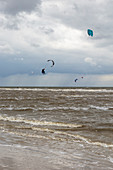 Kitesurfer, Nordstrand, St. Peter-Ording, Schleswig-Holstein, Germany