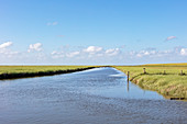 Wadden Sea National Park, Schleswig-Holstein, Germany