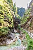 In der Almbachklamm in den Berchtesgadener Alpen, Bayern, Deutschland