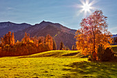 Mountain landscape in the backlight near Hundham, Bavaria, Germany
