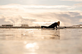 Silhouette of a woman with a surfboard lying on a beach with industrial units on the far horizon.