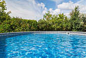 Outdoor pool surrounded by deciduous trees in residential backyard.