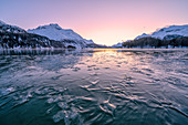 Tree branches trapped in ice under the frozen surface of Lake Sils at sunset, Engadine, Graubunden canton, Switzerland, Europe