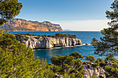 View over the Calanque de Port Pin and Cap Canaille, Calanques National Park, Cassis, Bouches du Rhone, Provence, France, Mediterranean, Europe