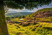 View of Curbar Edge from Baslow Edge, Baslow, Peak District National Park, Derbyshire, England, United Kingdom, Europe