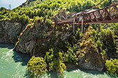 Bungee Jumping from Kawarau Bridge, Kawarau River Gorge, Queenstown, Otago, South Island, New Zealand, Pacific