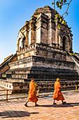Wat Chedi Luang, Chiang Mai, Northern Thailand, Thailand, Southeast Asia, Asia
