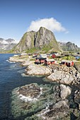 Traditional fishermen house in summer, Hamnoy, Nordland county, Northern Norway, Europe