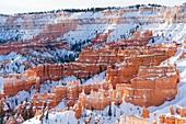 Hoodoos at Bryce Canyon in winter season, Tropic, Utah, Usa