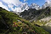 Italy, Piedmont, Pian del Re, Crissolo.\nMonviso is the highest peak of Piedmont. On the right side there is Visolotto peak.