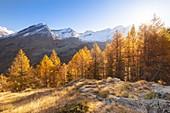 Valsavarenche, Gran Paradiso National Park, Aosta Valley, Italian alps, Italy
