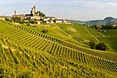 Serralunga d'Alba Castle through the vineyards, Serralunga d'Alba, Piedmont, Italy