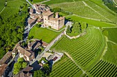 Aerial view of the medieval Castello di Grinzane Cavour. Grinzane Cavour, Langhe, Piedmont, Italy, Europe.
