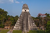 Temple I, known also as Temple of the Giant Jaguar, Tikal mayan archaeological site, Guatemala.