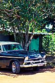 Classic black car under a tree in Viñales Valley, Cuba