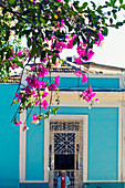 Pink flowers in front of a blue house in Trinidad, Cuba