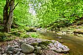 Romantische Flusslandschaft im Mühlviertel, Oberösterreich, Österreich