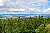 View of the Moldaustausee in the Bohemian Forest, Austria / Czech Republic