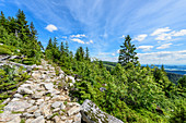 Hiking trail in the Bavarian Forest, Bavaria, Germany