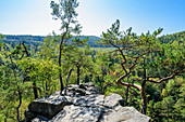 View from the Devil's Wall in South Bohemia, Czech Republic