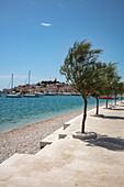 Trees along beach promenade, sailing boats and old town, Primosten, Šibenik-Knin, Croatia, Europe