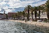 Beach promenade and palm trees, Split, Split-Dalmatia, Croatia, Europe