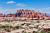 Sandstone pinnacles, Chesler Park, The Needles district, Canyonlands National Park, Utah, USA