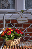 Flowers in the basket on the bench in Lueneburg, Germany