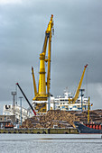 Yellow crane with driftwood in the port of Wismar, Germany