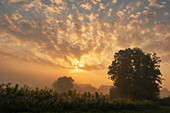 Sonnenaufgang im September südlich von Regensburg, Oberpfalz, Bayern, Deutschland, Europa
