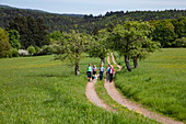 Group of hikers on field path in spring, Heimbuchenthal, Räuberland, Spessart-Mainland, Franconia, Bavaria, Germany