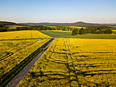 Aerial view of two young women on horses riding on dirt road through rapeseed fields with Stoppelsberg in the distance, Haunetal Starklos, Rhoen, Hesse, Germany, Europe