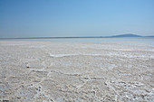 Ethiopia; Afar region; Danakil Desert; Danakil Depression; endless salt crust on the shores of the Karum lake; Salt mining around the lake