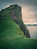 Frau wandert an Klippe der Insel Kalsoy, Färöer Inseln\n