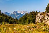 View to the Zahmer Kaiser in summer, Reit im Winkl, Chiemgau, Bavaria, Germany