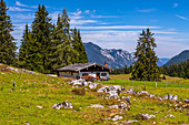 Almhuette Hemmersuppen Alm in summer with a view of the Rauschberg, Chiemgau, Bavaria, Germany