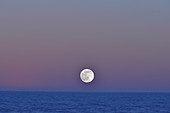 The full moon shines over the sea, Skreastrand near Grimsholmen, Halland, Sweden