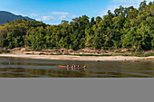 Locals in longtail boat on Mekong River with coastline and lush vegetation behind, near Luang Prabang, Luang Prabang Province, Laos, Asia