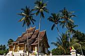 Coconut palms and roof of Haw Pha Bang (Royal Temple) next to the Royal Palace, Luang Prabang, Luang Prabang Province, Laos, Asia