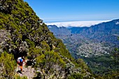 France, Reunion island, Cilaos, hiker and sea of clouds in the Cilaos cirque, listed as World Heritage by UNESCO