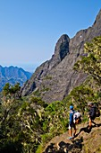 France, Reunion island, Cilaos, view on the Fleurs Jaunes peak from the Taibit ascent, listed as World Heritage by UNESCO