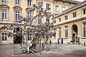 France, Paris, 11 Conti Museum, Currency of Paris, People Tree, Artwork of Subodh Gupta, exhibited in the courtyard