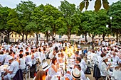 France, Paris, Place Dauphine, Dinner in White