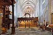 France, Haute Garonne, Saint Bertrand de Comminges, labeled Les Plus Beaux Villages de France (The Most Beaul Villages of France), stop on El Camino de Santiago, site listed as World Heritage by UNESCO, Notre Dame cathedral, the choir loft
