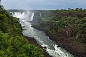 View of Iguazu Falls, Iguazu National Park, Parana, Brazil, South America