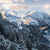 Schloss Neuschwanstein im Winter, Allgäu, Bayern, Allgäu, Bayern, Deutschland