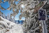 Winterwanderweg auf dem Tegelberg bei Schwangau, Allgäu, Bayern, Deutschland